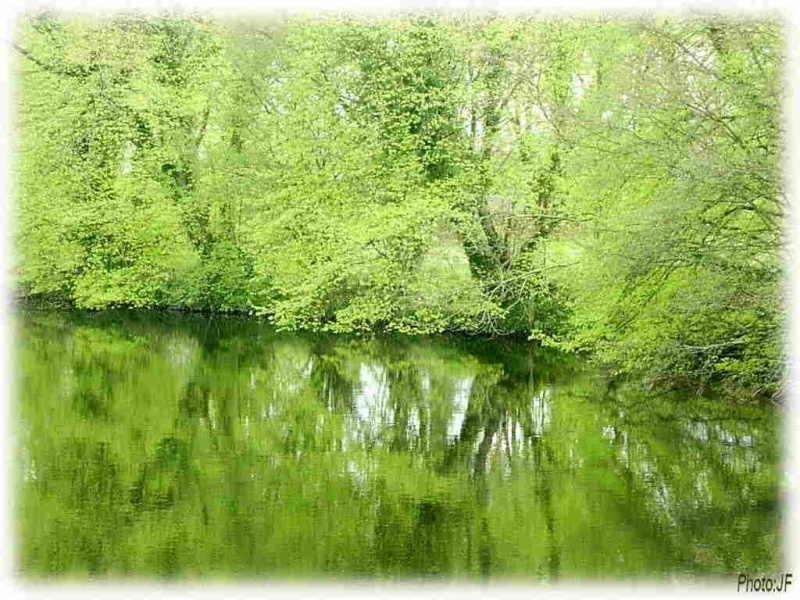 La rivière de mon enfance et d'aujourd'hui