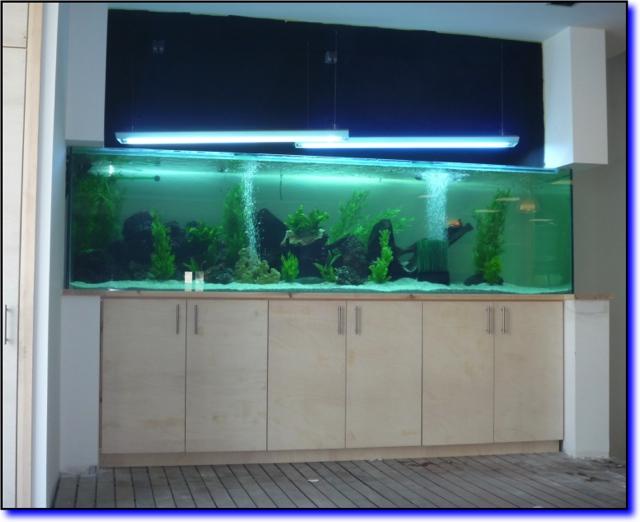 Aquarium complet 2200l e douce aqua for Aquarium interieur