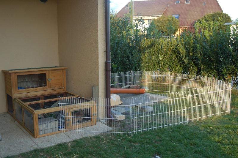 Comment am nager les lapins dehors pour l 39 hiver for Construire une cage a lapin exterieur