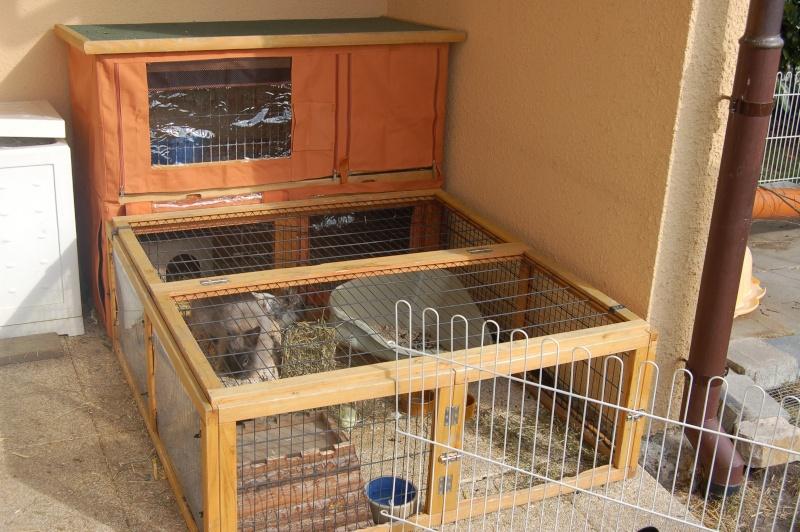 Comment am nager les lapins dehors pour l 39 hiver for Construire une cabane a lapin exterieur