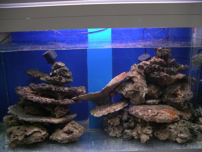 Bac de jayrhum 400l des nouvelles pour 2010 for Bac a poisson 1000l