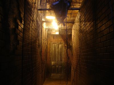 trip report the darkness haunted house
