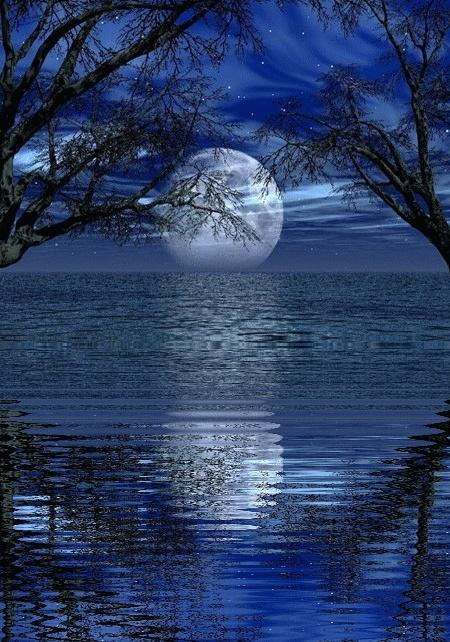 Le monde ext rieur est le reflet de notre monde int rieur for Monde exterieur
