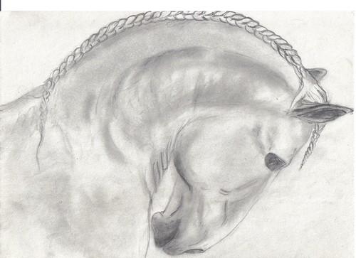 Qui aime dessiner les chevaux - Dessiner des chevaux facilement ...
