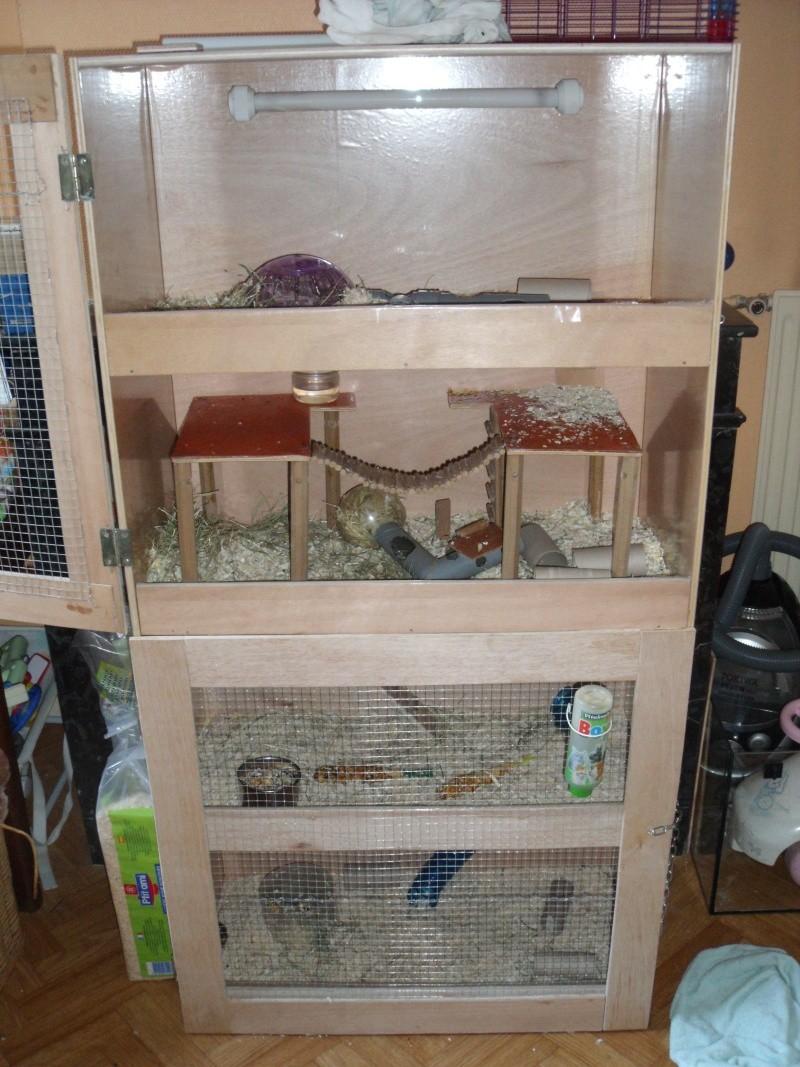 fabriquer une cabane pour rat. Black Bedroom Furniture Sets. Home Design Ideas