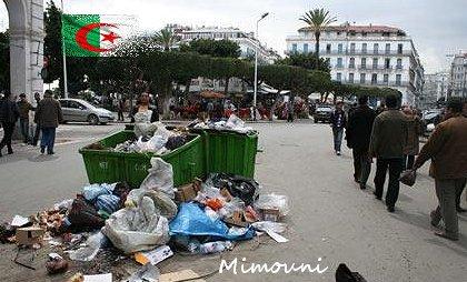 algerie by mimouni